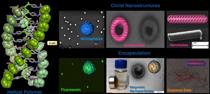 Nanoestruturas quirais obtidas de pol�meros helicodais e complexos met�licos (�CiQUS)